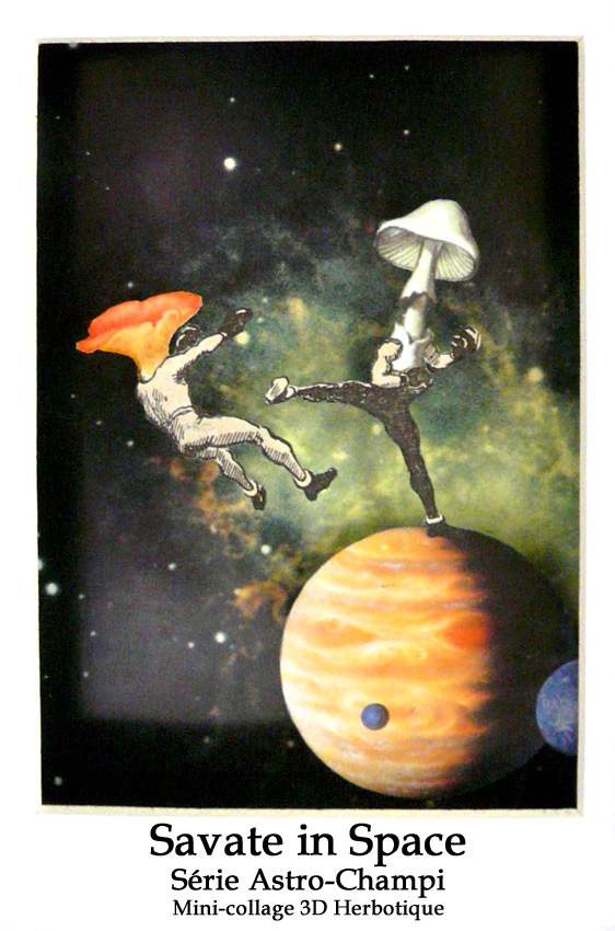 savate in space collage 3D